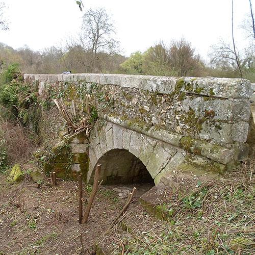 Initiatives77 - Débroussaillage du Pont des Romains à Évry-Grégy (après)