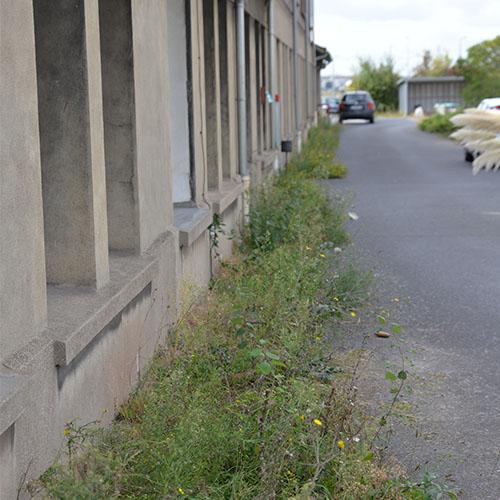 Initiatives77 - Désherbage au long des bâtiments SNCF Réseau à Vaires (avant)