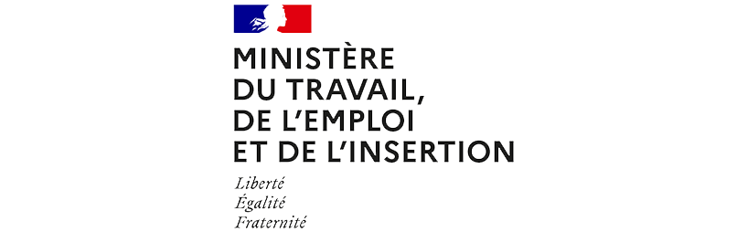 Ministère du Travail, de l'Emploi et de l'Insertion - Organisation de la délégation générale à l'emploi et à la formation professionnelle (DGEFP)